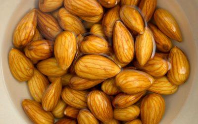 Nutrición: activación de semillas, legumbres y frutos secos